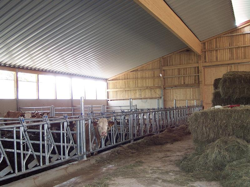 Gemeinsame Agrar, Groha Agrarhallen Stallungen &RS_81